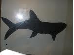 Tiburon prehistorico Symmorium