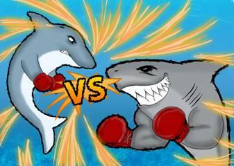 delfin vs tiburon