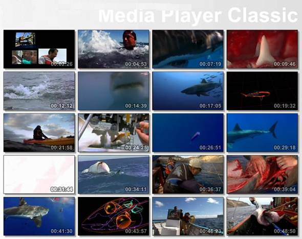 documental tiburon