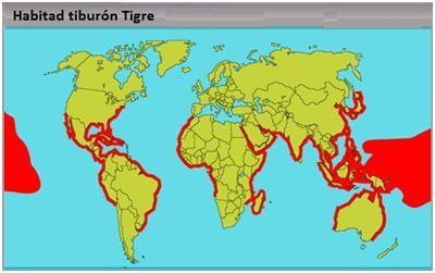 habitad tiburon tigre